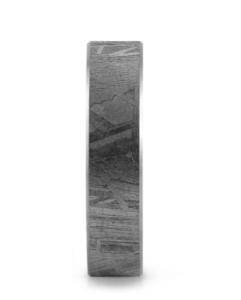 Meteoriet met 14 karaats witgouden trouwring
